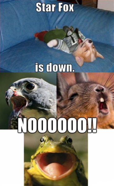 Starfox is down ...